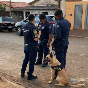 """""""Operação Tutte"""" combate o tráfico de drogas na região de Santa Gertrudes"""