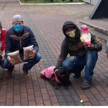 Com doação de casinhas, cães também serão abrigados em albergue de Limeira