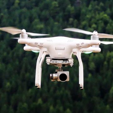 Vereadores querem drones e multa para combater abandono de animais em Limeira