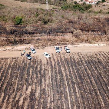 Queimadas em Limeira crescem 15% e já consumiram o dobro de áreas verdes em 2021